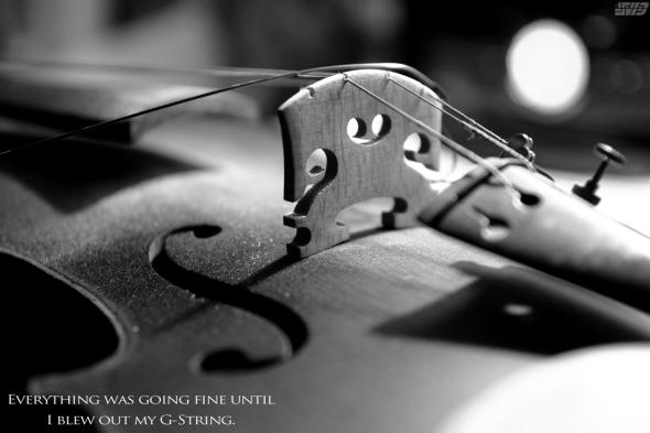 violin-9675