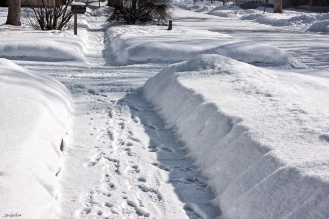 snow2014-9149