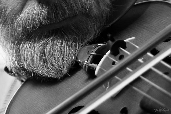 fiddle-0196