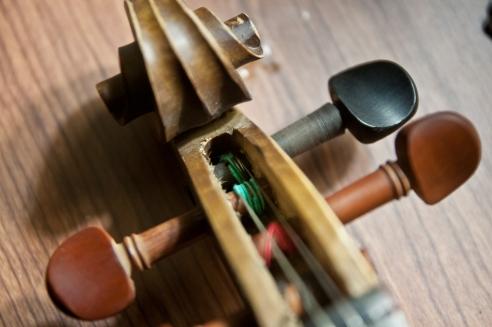 fiddle-5385