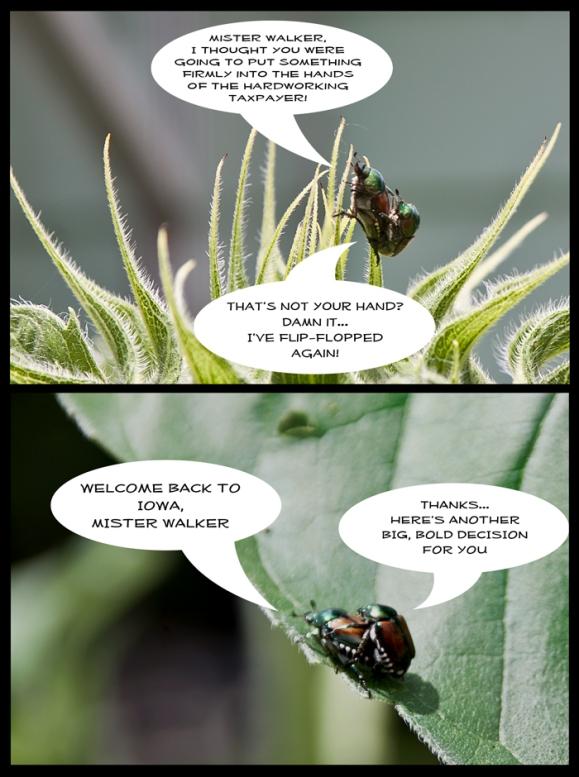 bugwalker